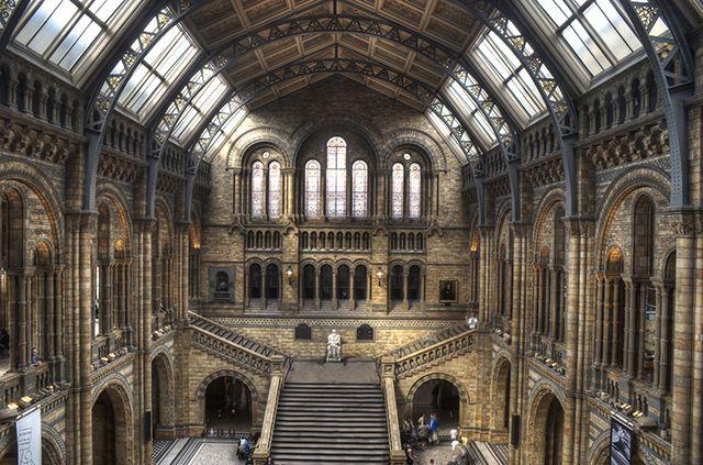 Musée d'Histoire Naturelle, Londres, Royaume-Uni. http://www.lonelyplanet.fr/article/top-10-des-hebergements-insolites-en-2016 #musée #Londres #RoyaumeUni #hebergement #voyage