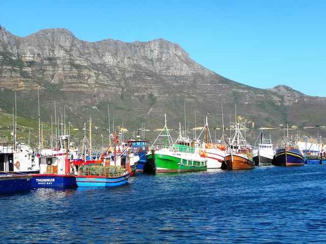 MUST TRY - fish and chips at Houtbaai - great views of the local fishermen's boats and even feed the seals