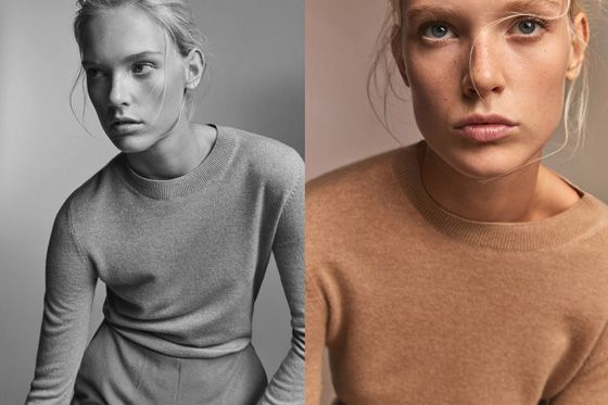 Women's Sweaters & Cardigans | Massimo Dutti Fall Winter Collection