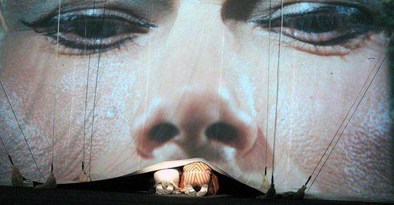 Kouzelný cirkus: němá pohádka o putování důvěřivých klaunů za Venuší