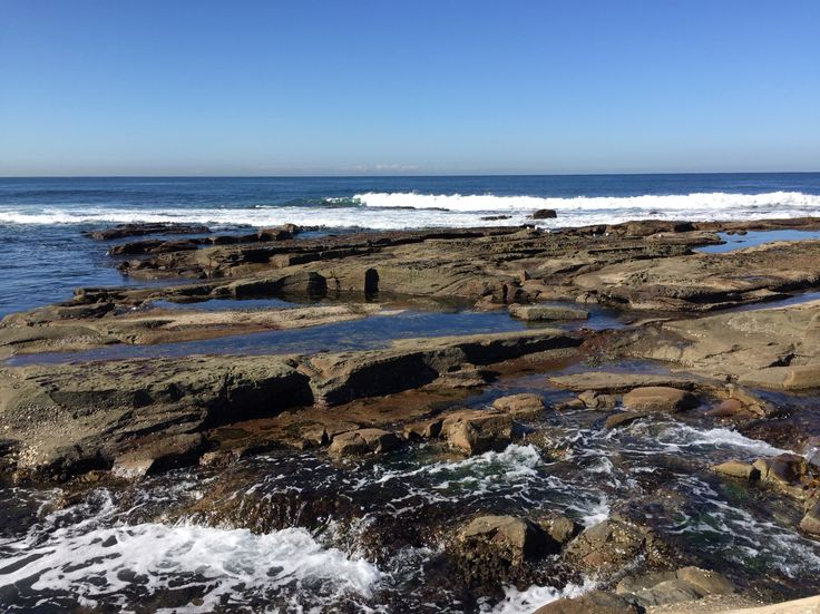 Paradise on earth #newcastle #nsw