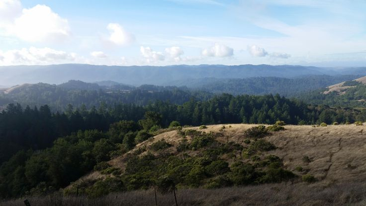 Russian Ridge Open Space Preserve San Mateo County CA #hiking #camping #outdoors #nature #travel #backpacking #adventure #marmot #outdoor #mountains #photography