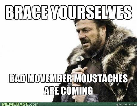 0d55d14dbb35716427dcf7cef9b14c7b movember moustaches the 25 best brace yourself meme ideas on pinterest cat love