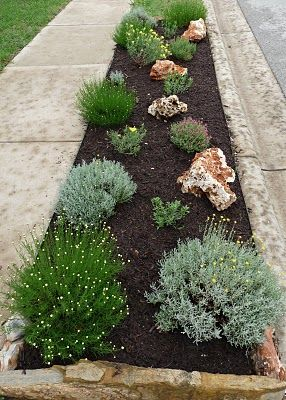 Curbside xeriscapeGardens Ideas, Landscapes Ideas, Texas Gardens, Texas Gardening, Side Yards, Front Yards, Flower Beds, Central Texas, Curbside Landscapes
