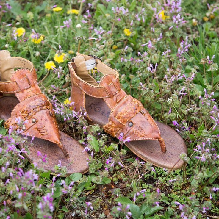 Roan Clover Sandal - Women's Shoes | Buckle