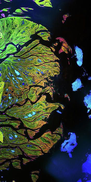 Lena River Delta Russia - photographic print of images shot from satellite