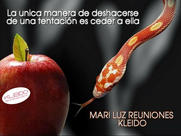 TENTACION MARI LUZ REUNIONES Pinterest