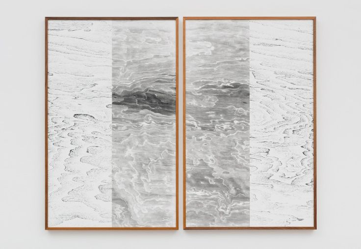 Lisa Oppenheim | The approach