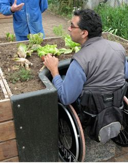 How To Make Raised Beds For Wheelchair Gardeners