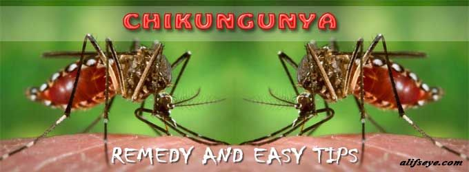 There is no unique antiviral drug treatment for chikungunya and read more about its Causes, Virus, symptoms, signs and treatment at alifseye.com