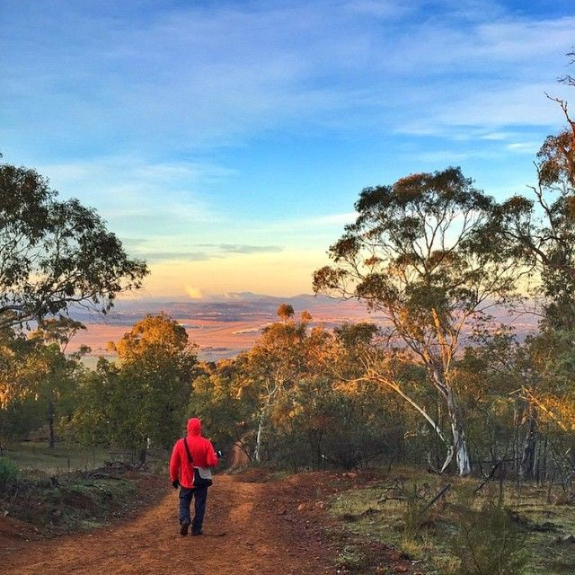 Did you try something new in Canberra this long weekend? Instagrammer fran_t found herself getting up extra early this morning for a 6am hike up Mount Majura with Instagrammers wanderlust73 and annaj31. #VisitCanberra #seeaustralia