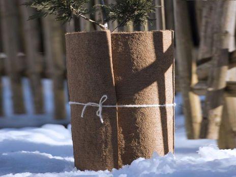 Windhager Winterschutz Kokos-Filzmatte #Winter #Schutz #Pflanze #Garten #Galaxus