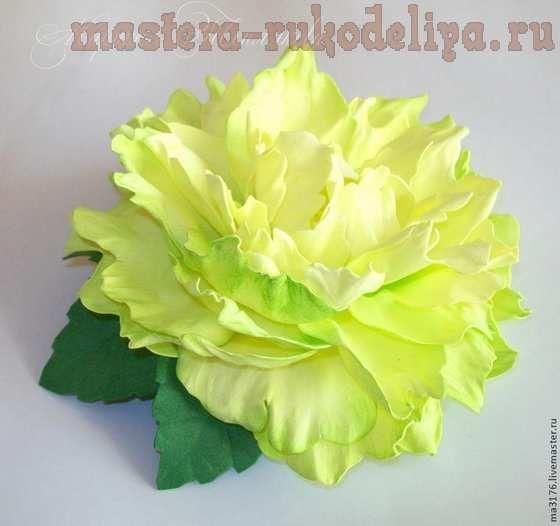 Мастер-класс по цветам из фоамирана: Пион