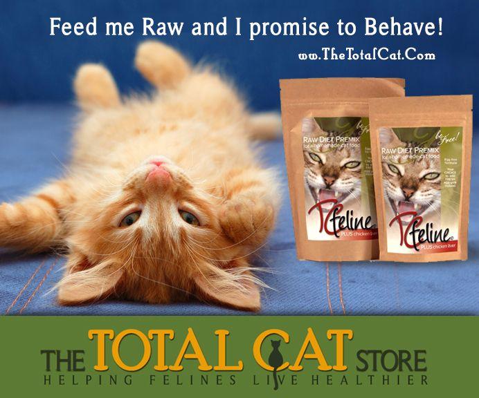 34 best benefits of feeding homemade raw cat food images on how to make a homemade raw cat food with tcfeline premix is very forumfinder Choice Image