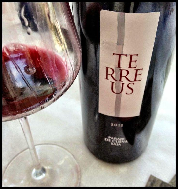 El Alma del Vino.: Bodegas Mauro Terreus 2011.