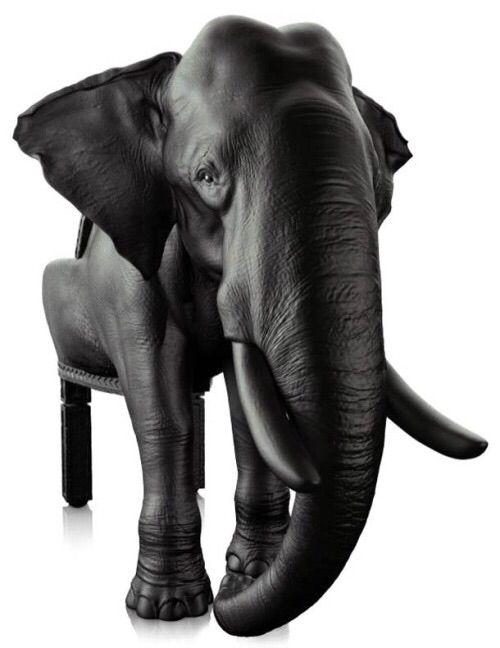 ASYLUM ART: ANIMAL CHAIRS | DESIGNER: MAXIMO RIERA