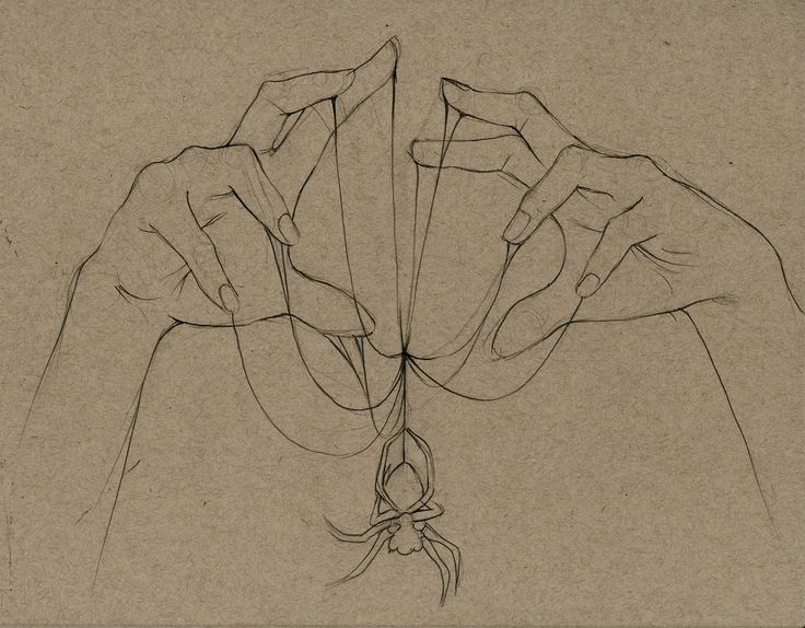 Drawing spider....nice
