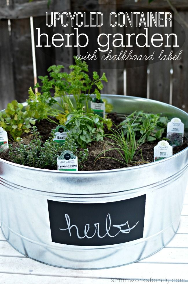 Upcycled Container Garden + Tips For Planting Herbs In A Container Garden