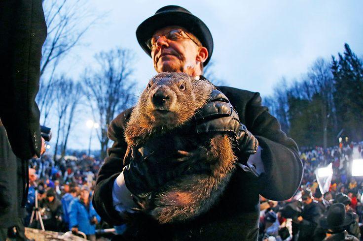 Marmota Phil pronostica seis semanas más de invierno en EU
