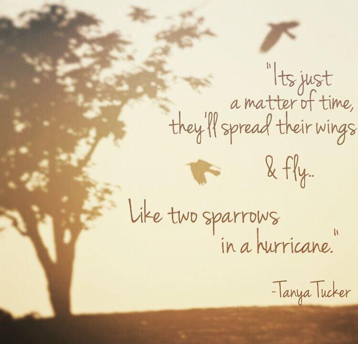 Tanya Tucker - Two Sparrows In A Hurricane Lyrics