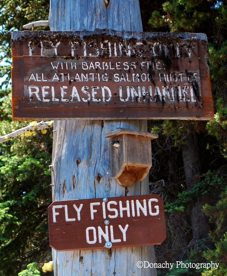 Outdoor Recreation: 32 Best Fly Fishing Fun Images On Pinterest