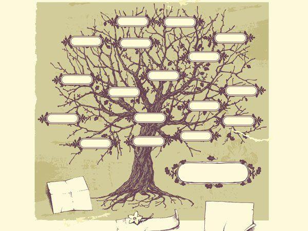 Árbol genealógico clásico