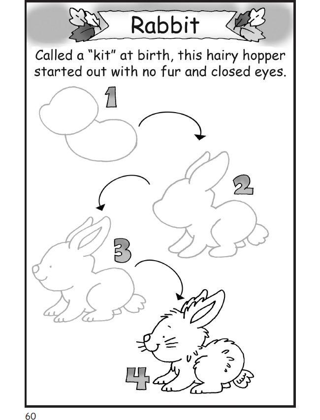 how to draw a cartoon rabbit face