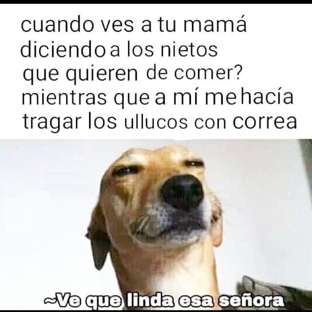 Pin By Luciana On Memes Crush Memes Memes Funny Memes