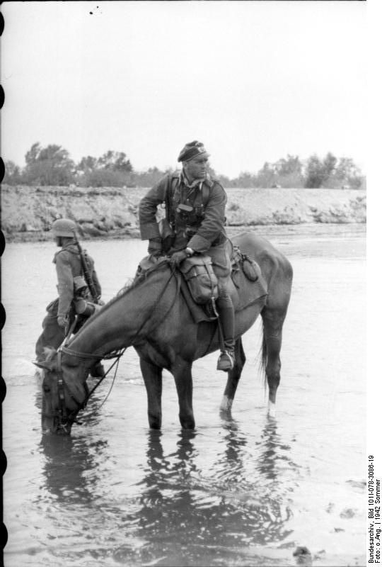 German officer with his horse. Russia 21 June 1942. The German army deployed more horses than mechanized means; to the end of the war, the horse was the backbone of logistics and often in moving artillery.