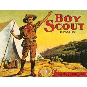 Boy Scouts of America membership