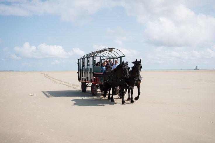 Horse Wagon on The Green Beach (Het Groene Strand) on Terschelling #Wadden #Eiland #Nederland