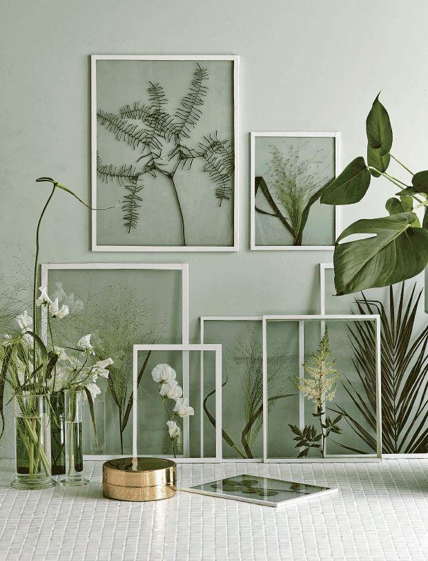 Framed / botanical art - photograph via Femina.dk // link in blog