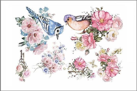 Neat Transfer Birds Flowers Flowers Watercolor Illustration Print