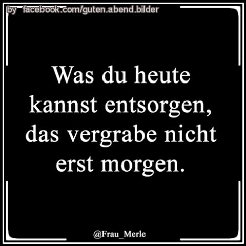 #lachen #sprüche #witz #funnypictures #funnypicsdaily #lmao #zitat #funny #derlacher #laugh