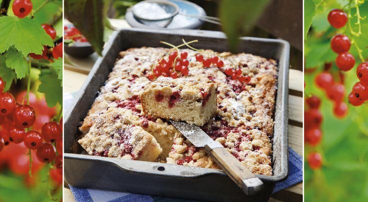 Dignar vinbärsbuskarna med tunga klasar? Ta vara på bären och baka denna härliga kaka!