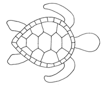 Dynamic image inside turtle template printable
