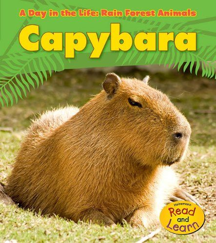 Capybara (A Day in the Life: Rain Forest Animals) Price:$6.79