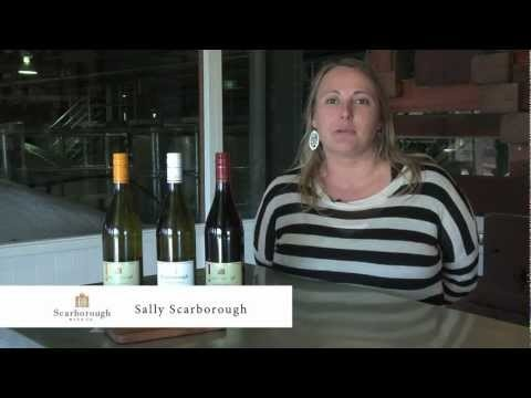 Scarborough on Hermitage Cellar Door - Sally talks you through what you can experience when you visit our Hunter Valley Cellar Door on Gillards Road #wine #huntervalley