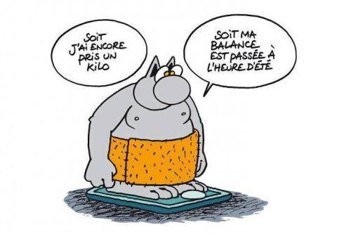 Le Chat de Geluck