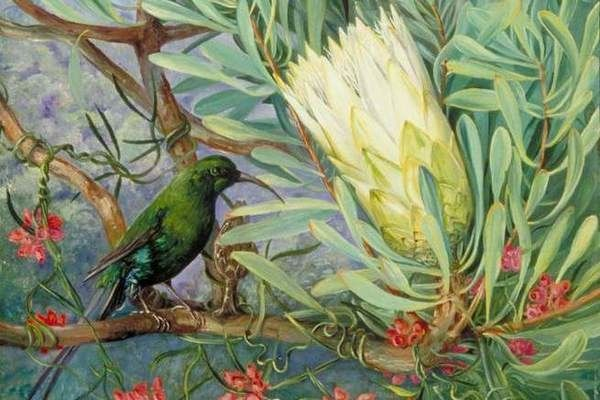 Walking into the Marianne North Gallery is like entering a palace of color. The walls are plastered in vibrant greens, oranges, and fuchsias, jammed together...