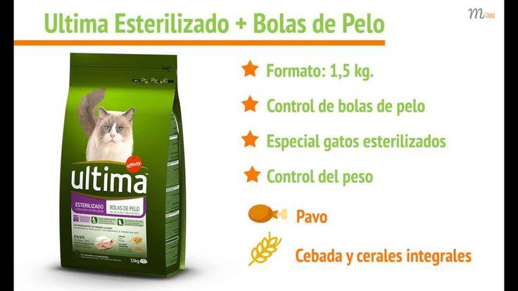Piensos ULTIMA GATOS | Mascoweb Presentamos la gama de #piensos #Ultima para #gatos . Ultima es un alimento completo para gatos de todo tipo, fabricado por Affinity Petcare. No te pierdas los precios con descuento del 5% en nuestra web. ¡Te esperamos! https://mascoweb.es/8-pienso-para-gatos https://mascoweb.es/541-piensos-ultima-gatos ____________________________________________________ Vectores diseños con: http://www.freepik.es/ + http://www.flaticon.com/