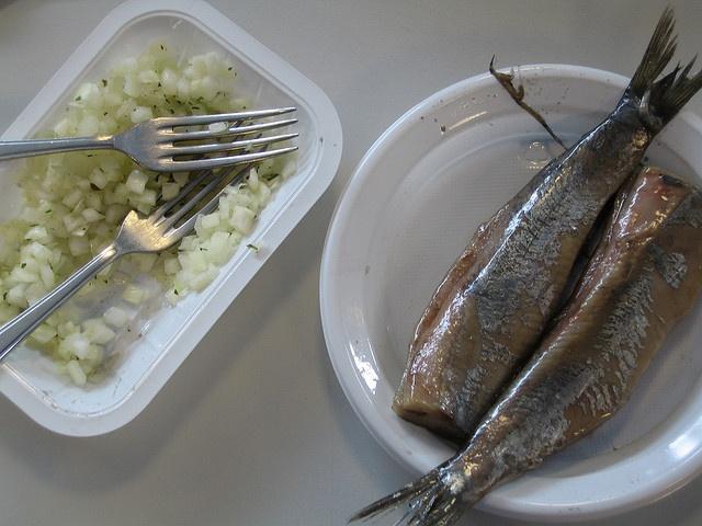 Maatjes - Dutch food