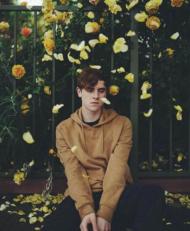 flower pedals always remind me of troye