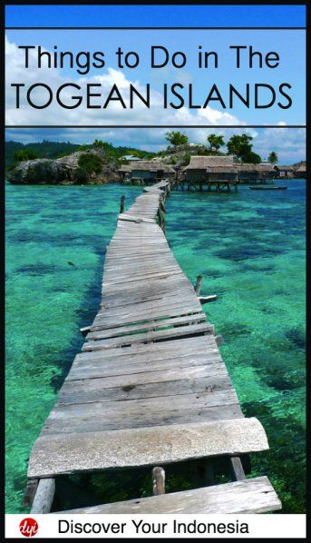 Possibly one of the best paths in the world :D And here are a few more of the highlights of the Togean Islands, Indonesia.