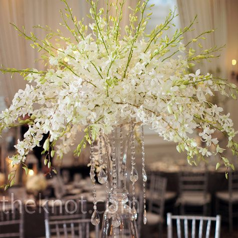 White Orchid Centerpieces    Clear glass vases were raised on platforms and filled with airy dendrobium orchids and hanging crystals.