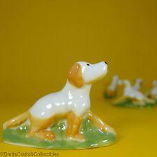 Golden Retriever Pup / Setter