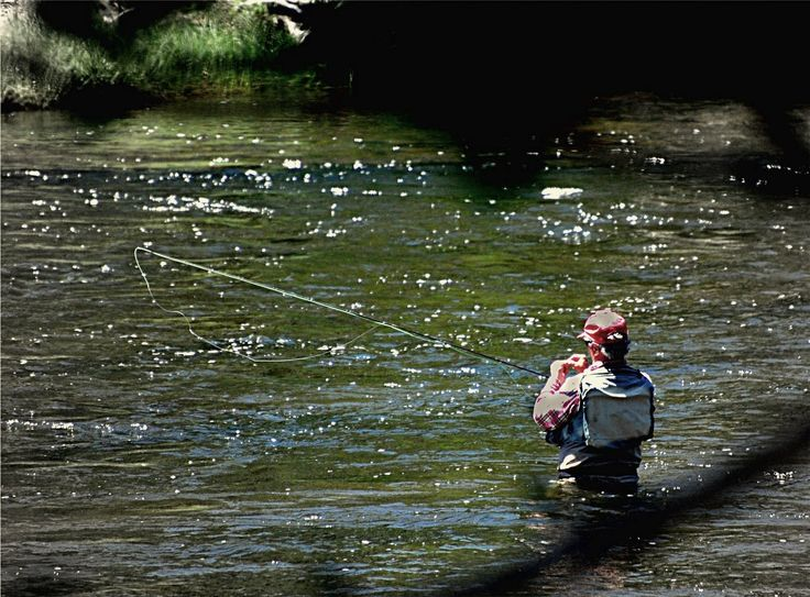 504 best camping fishing images on pinterest fishing for Fly fishing films