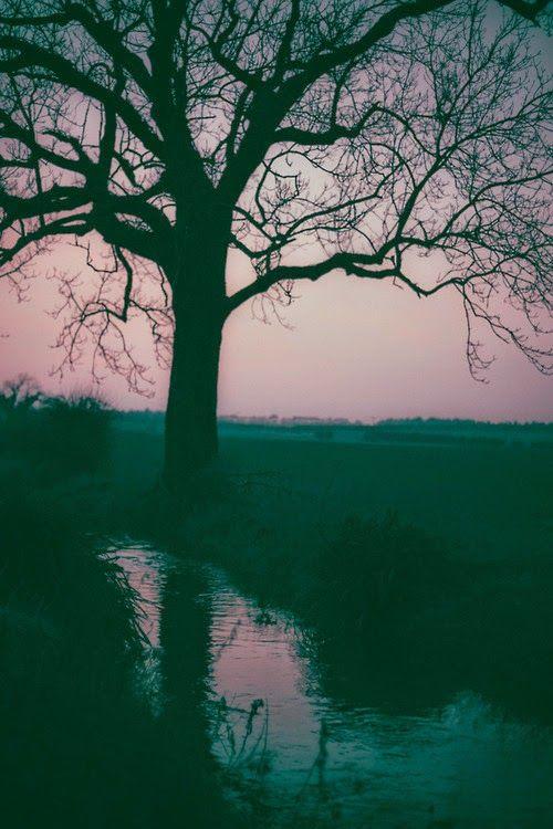 Melancholy:  Sunset on the ...