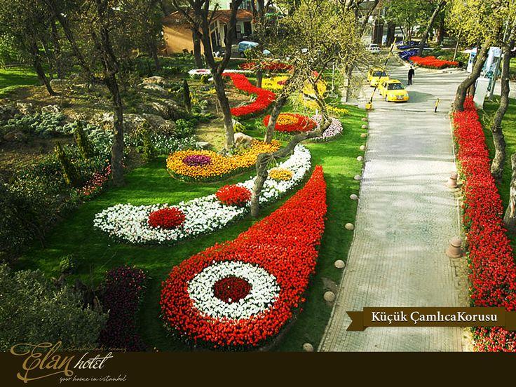 Lale festivali kapsamında Küçük Çamlıca Korusu'na 15 farklı türde 610.000 lale dikildi. :) #elanhotelistanbul #istanbul #tulip #lale #kucukcamlicakorusu #Turkey #Turkiye
