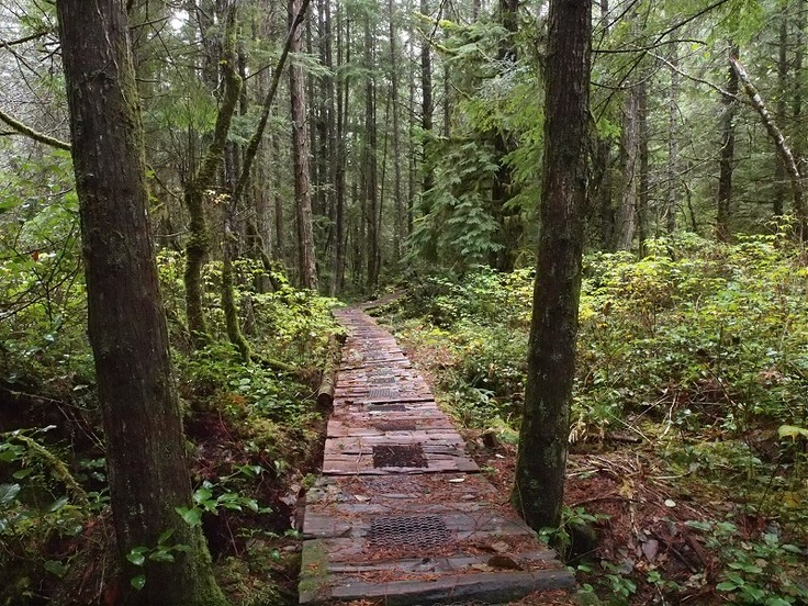 The Yew Trail Powell River BC